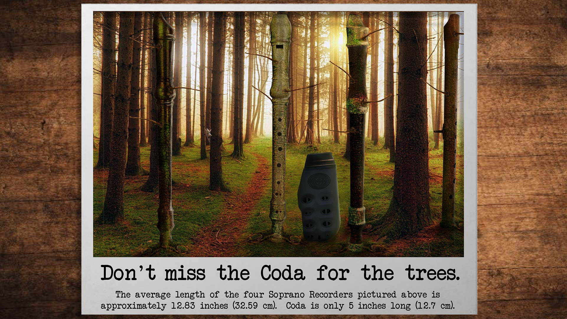 Don't miss the Coda for the trees!